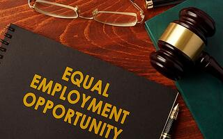 promote equality and put an end to workplace discrimination