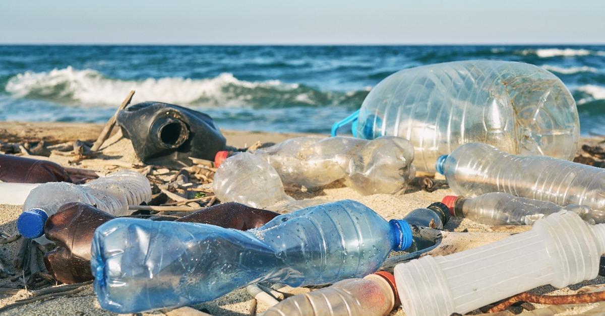 Environmental Awareness in Business