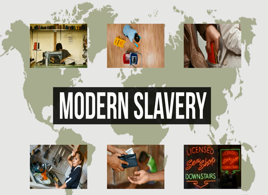 Modern Slavery Module