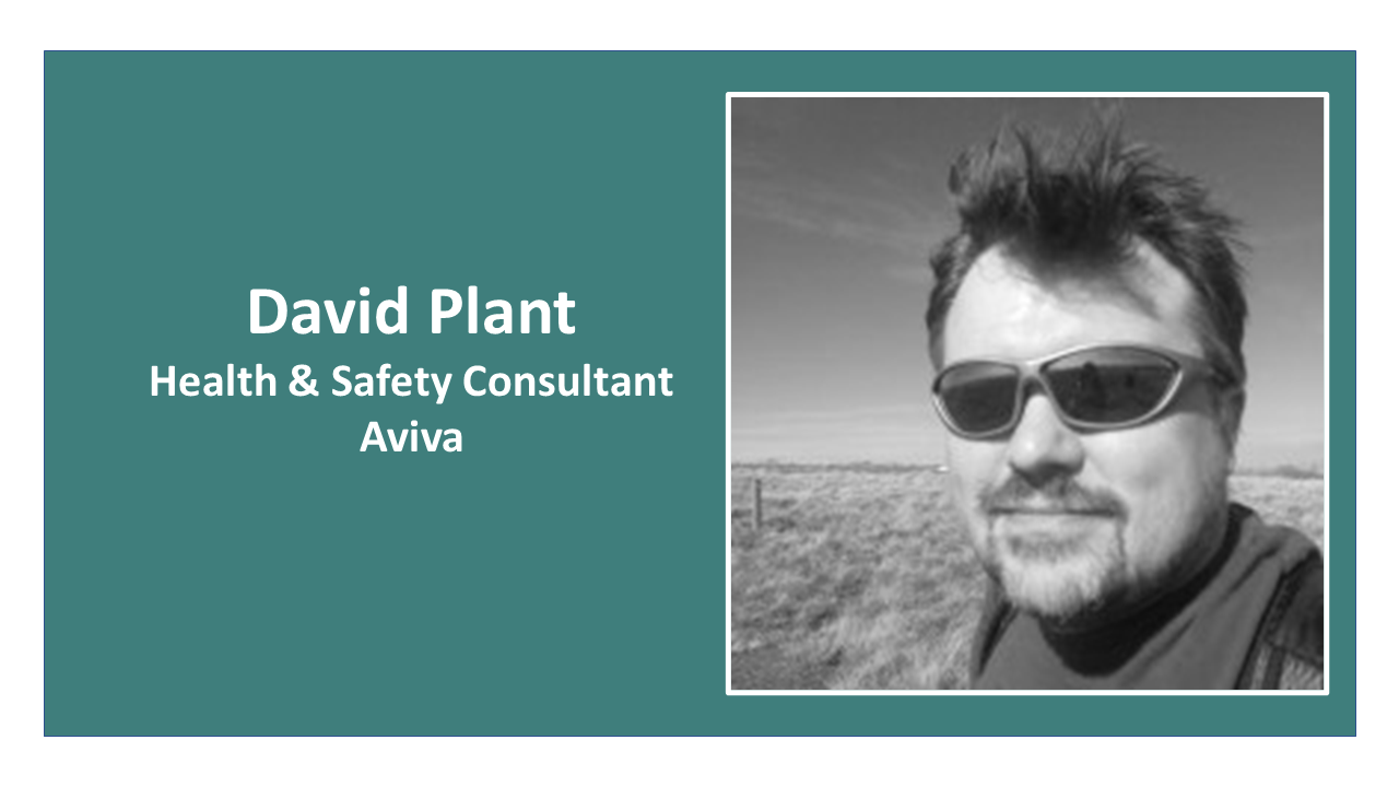 David Plant, Aviva