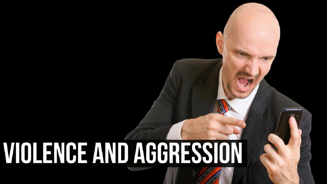 Violence & Aggression Course